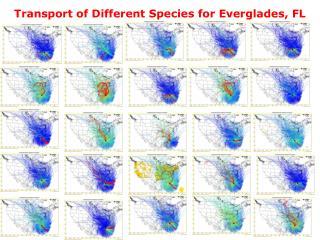 Transport of Different Species for Everglades, FL