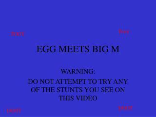 EGG MEETS BIG M