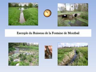 Exemple du Ruisseau de la Fontaine de  Montbail