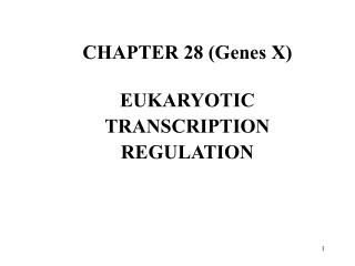 CHAPTER 28 (Genes X) EUKARYOTIC TRANSCRIPTION REGULATION