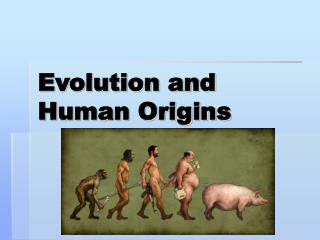 Evolution and Human Origins