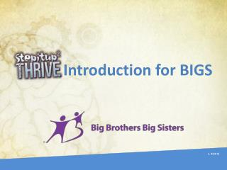 Introduction for BIGS