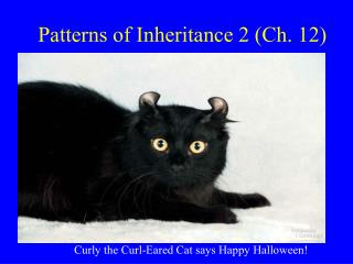 Patterns of Inheritance 2 (Ch. 12)