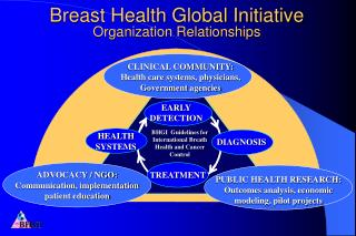 Breast Health Global Initiative Organization Relationships