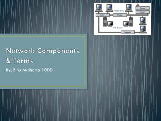 Network Components & Terms