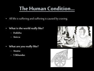 The Human Condition �
