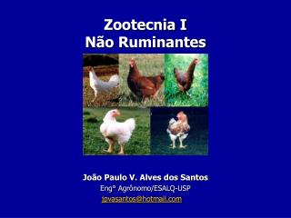 Zootecnia I  N o Ruminantes