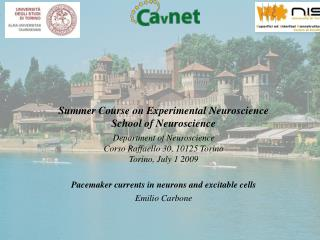 Pacemaker currents in neurons and excitable cells Emilio Carbone