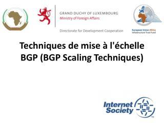 Techniques de mise à l'échelle BGP (BGP Scaling Techniques)