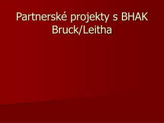 Partnersk� projekty s BHAK Bruck/Leitha