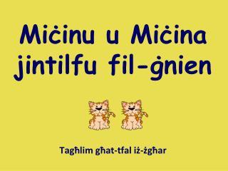 Miċinu u Miċina jintilfu fil-ġnien