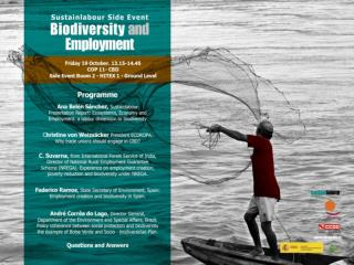 Objectives: Better understand the links between biodiversity protection and employment