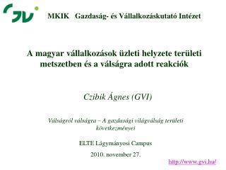 A magyar vállalkozások üzleti helyzete területi metszetben és a válságra adott reakciók