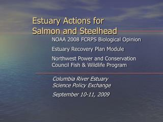 Estuary Actions for  Salmon and Steelhead