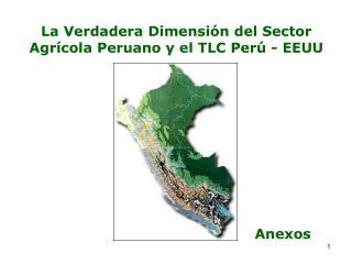 La Verdadera Dimensión del Sector Agrícola Peruano y el TLC Perú - EEUU