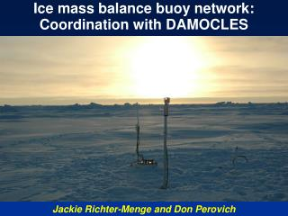 Ice mass balance buoy network: Coordination with DAMOCLES
