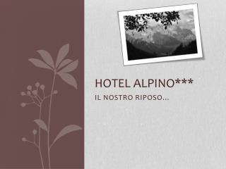 HOTEL ALPINO***