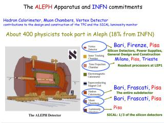 The  ALEPH  Apparatus and  INFN  commitments