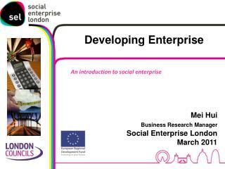 Mei Hui Business Research Manager Social Enterprise London March 2011
