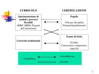 Sperimentazione di moduli e percorsi flessibili (BIRF, SIRIO, Progetti dell�autonomia)