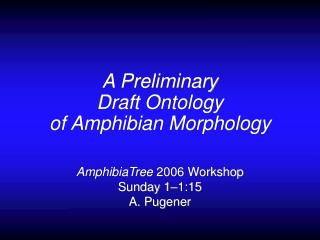 A Preliminary  Draft Ontology  of Amphibian Morphology