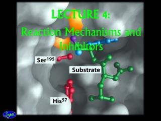 LECTURE 4: Reaction Mechanisms and Inhibitors