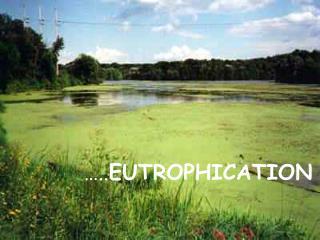 ….. EUTROPHICATION