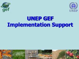 UNEP GEF Implementation Support