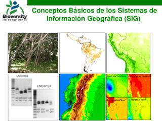 Conceptos Básicos de los Sistemas de Información Geográfica (SIG)