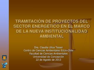 TRAMITACIÓN DE PROYECTOS DEL SECTOR ENERGÉTICO EN EL MARCO DE LA NUEVA INSTITUCIONALIDAD AMBIENTAL