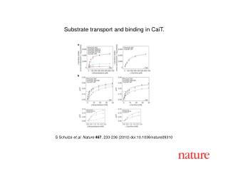 S Schulze  et al. Nature 467 , 233-236 (2010) doi:10.1038/nature09310