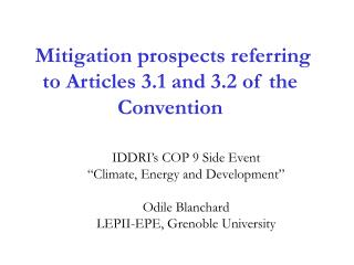 Mitigation prospects referring to Articles 3.1 and 3.2 of the Convention