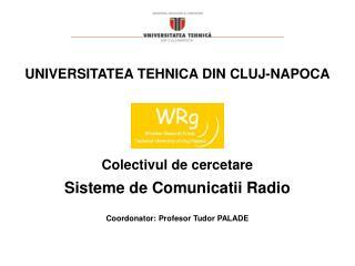 Colectivul de cercetare Sisteme de Comunicatii Radio Coordonator: Profesor Tudor PALADE
