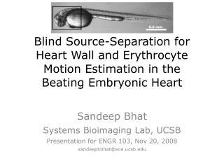 Sandeep Bhat Systems Bioimaging Lab, UCSB Presentation for ENGR 103, Nov 20, 2008