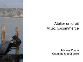 Atelier en droit M.Sc. E-commerce Adriane Porcin Cours du 6 août 2010