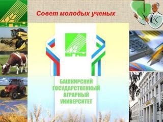 Участие молодых ученых в конкурсах и грантах за 2012 г.