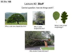Lecture #2: Stuff