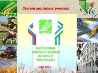 Совет молодых ученых                       Уфа  2010