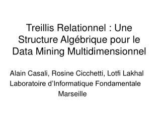Treillis Relationnel : Une Structure Algébrique pour le Data Mining Multidimensionnel