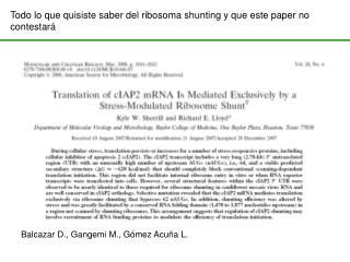 Todo lo que quisiste saber del ribosoma shunting y que este paper no contestará