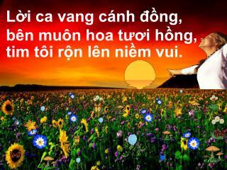 Lời ca vang cánh đồng, bên muôn hoa tươi hồng, tim tôi rộn lên niềm vui.