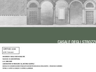 UNIVERSITA' DEGLI STUDI ROMA TRE FACOLTA' DI ARCHITETTURA A.A. 2008-2009