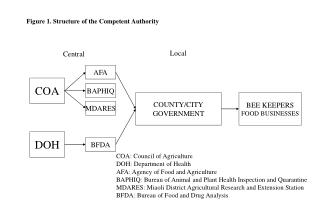 Figure 1. Structure of the Competent Authority