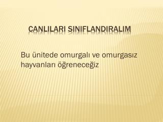 CANLILARI SINIFLANDIRALIM