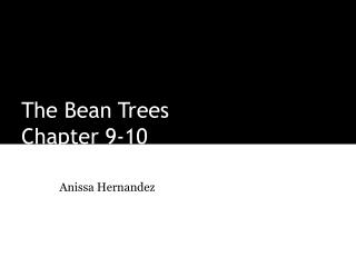 The Bean Trees Chapter 9-10