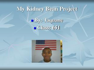 My Kidney Bean Project