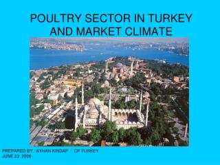 POULTRY SECTOR IN TURKEY  AND MARKET CLIMATE