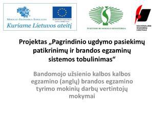 """Projektas """"Pagrindinio ugdymo pasiekimų patikrinimų ir brandos egzaminų  sistemos tobulinimas"""""""