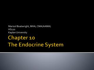 Chapter 10 The Endocrine System