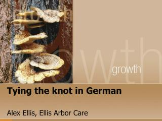 Tying the knot in German